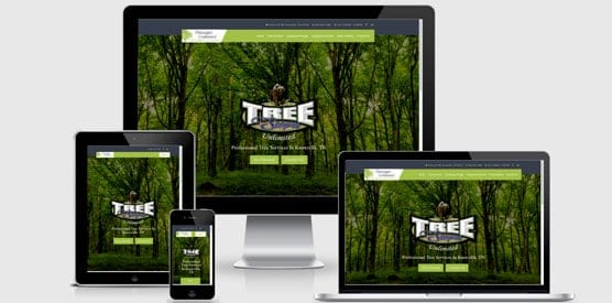 knoxville website design company for local businesses