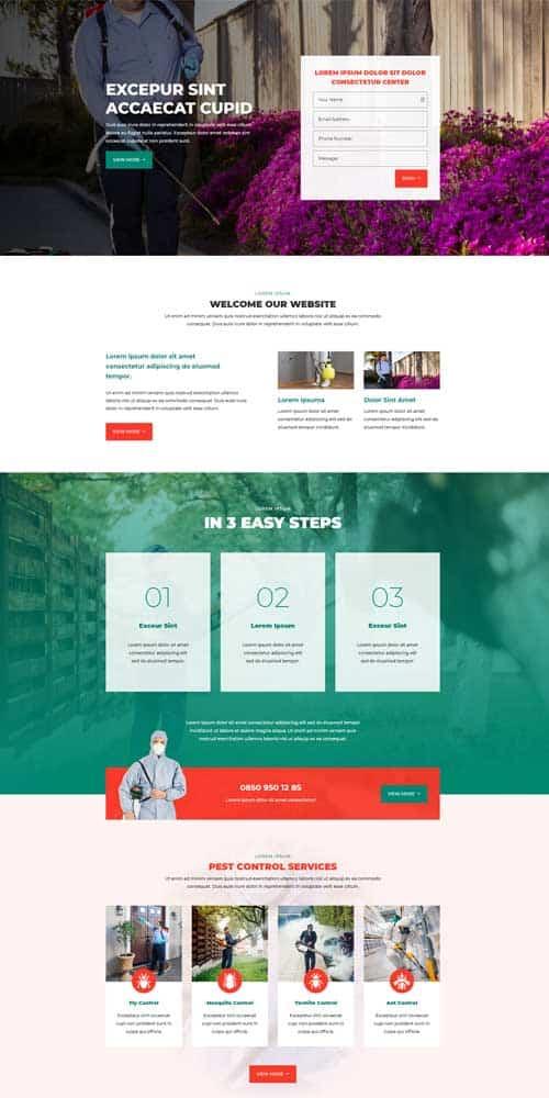 website design for pest control companies